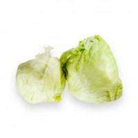 Lettuce Head / Iceberg Lettuce Organik 500gr