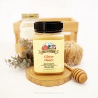 Hillary Farm Clover Honey 500gr