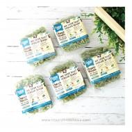 Ladang Lima, Paket 5pc Mie Kale 76g Dengan Bumbu non MSG