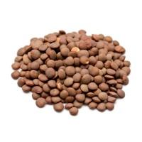 Brown Lentils 100gr